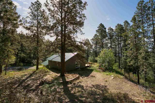 344 Groves Drive, Durango, CO 81301 (MLS #745754) :: Durango Mountain Realty