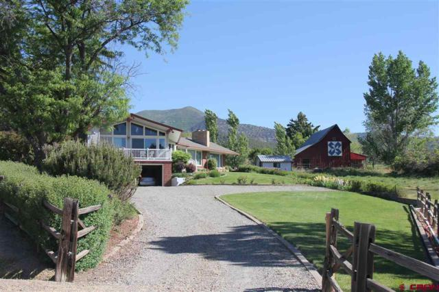 15466 Fire Mountain Road, Paonia, CO 81428 (MLS #745755) :: CapRock Real Estate, LLC