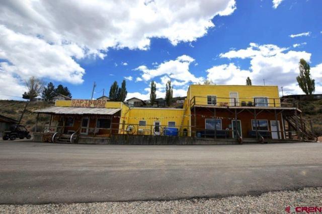 16020 W Highway 50 Highway, Sapinero, CO 81230 (MLS #745762) :: CapRock Real Estate, LLC