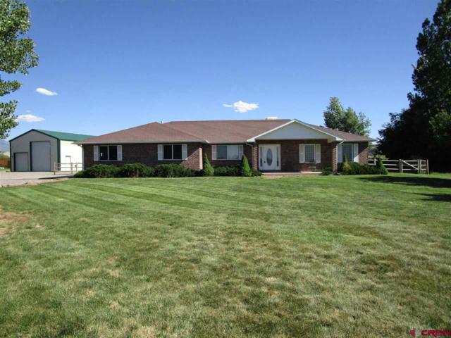 66760 Solar Road, Montrose, CO 81403 (MLS #745778) :: Durango Home Sales