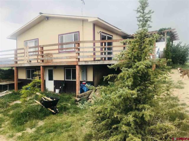 78212 Basalt Road, Crawford, CO 81415 (MLS #745783) :: CapRock Real Estate, LLC