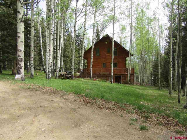 201 Lake Road, Cimarron, CO 81220 (MLS #745790) :: Durango Home Sales