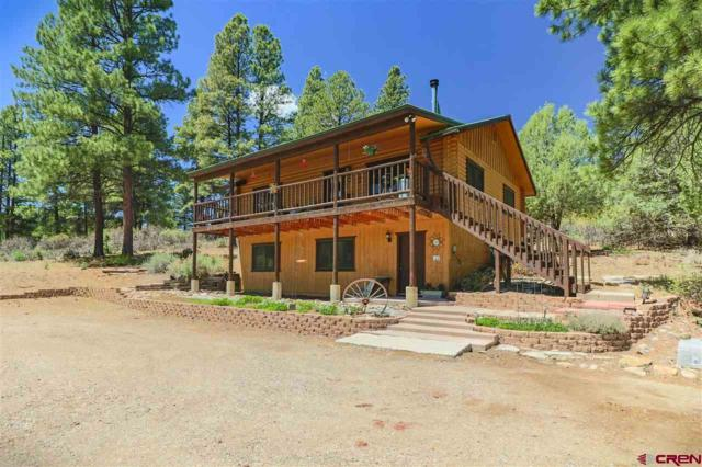 651 Beucler Ln, Pagosa Springs, CO 81147 (MLS #745808) :: CapRock Real Estate, LLC