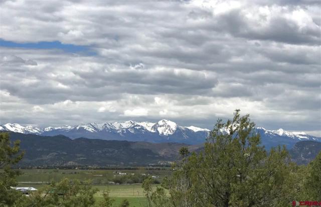 72 Anasazi Place, Durango, CO 81303 (MLS #745853) :: CapRock Real Estate, LLC