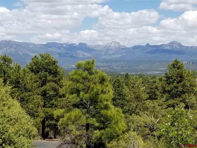 37 Cool Pines Drive, Pagosa Springs, CO 81147 (MLS #745906) :: Durango Home Sales
