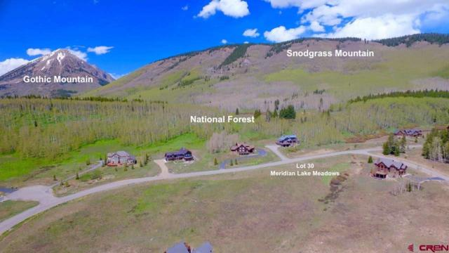 510 Meadow Drive, Crested Butte, CO 81224 (MLS #745911) :: CapRock Real Estate, LLC