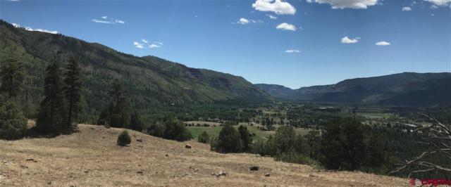 1703 Elkhorn Mountain Road, Durango, CO 81301 (MLS #745929) :: Durango Mountain Realty