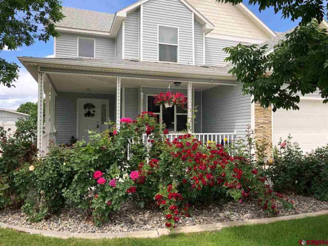 789 Barstow Street, Delta, CO 81416 (MLS #745988) :: CapRock Real Estate, LLC
