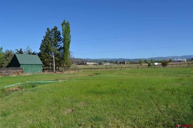 1809 Bayfield Parkway, Bayfield, CO 81122 (MLS #746007) :: Durango Home Sales