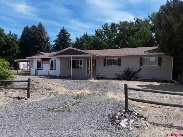 12458 E Spring Circle, Eckert, CO 81418 (MLS #746015) :: CapRock Real Estate, LLC