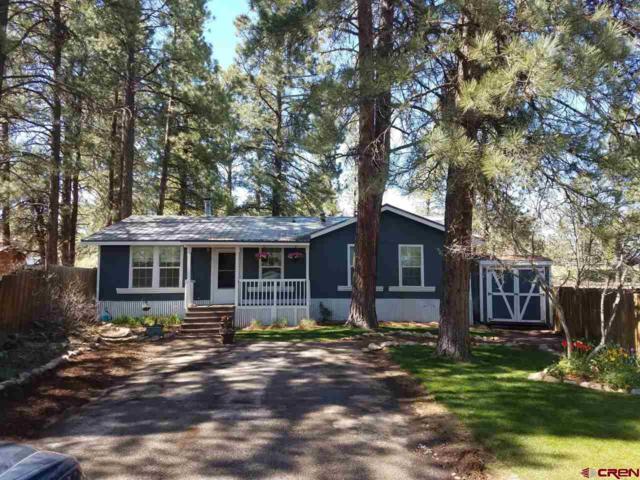 33 Pine Dale Lane, Durango, CO 81303 (MLS #746025) :: Durango Home Sales