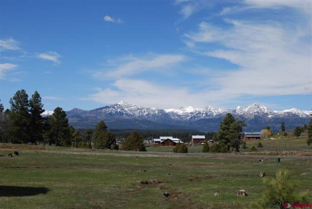 48 Mariposa Drive, Pagosa Springs, CO 81147 (MLS #746040) :: Durango Home Sales