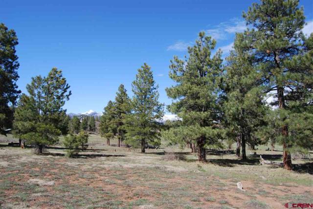 5071 N Pagosa Boulevard, Pagosa Springs, CO 81147 (MLS #746041) :: CapRock Real Estate, LLC