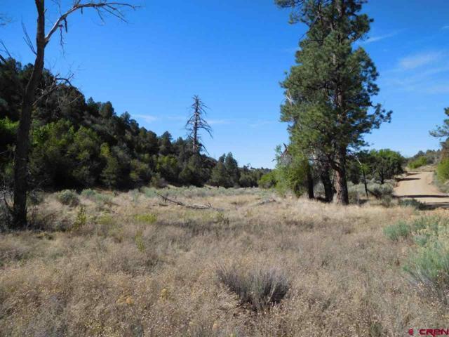 TBD Adobe Drive, Hesperus, CO 81326 (MLS #746054) :: Durango Mountain Realty