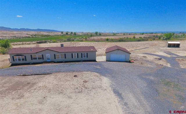 21646 Solar Court, Delta, CO 81416 (MLS #746108) :: Durango Home Sales