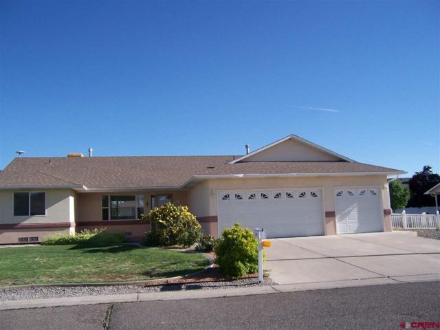 1672 Wetterhorn, Montrose, CO 81401 (MLS #746167) :: CapRock Real Estate, LLC