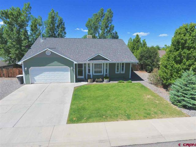 2000 Stan Drive, Montrose, CO 81401 (MLS #746186) :: CapRock Real Estate, LLC