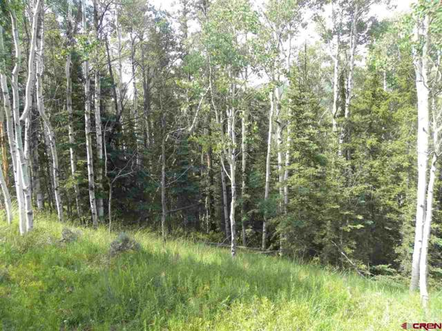 TBD Cemetery Road, Pitkin, CO 81241 (MLS #746187) :: Durango Home Sales