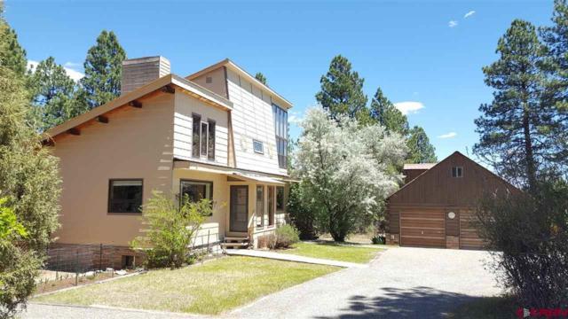 490 County Road 142, Durango, CO 81303 (MLS #746193) :: Durango Home Sales
