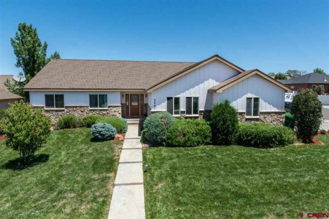 2241 Freedom Way, Montrose, CO 81401 (MLS #746222) :: CapRock Real Estate, LLC