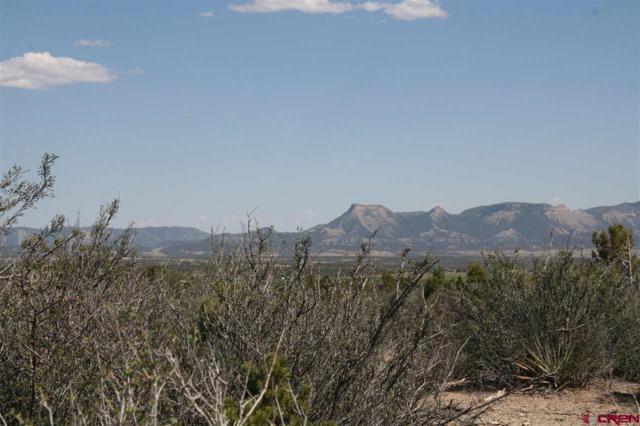 16924 Road 28.8, Dolores, CO 81323 (MLS #746247) :: Durango Home Sales