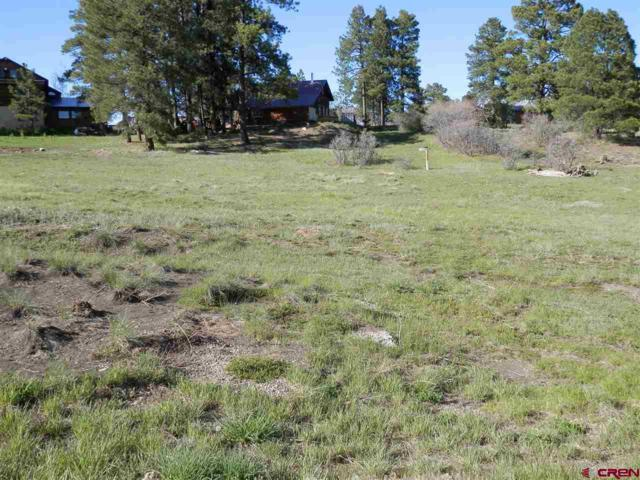 95 N Pinescent Court, Pagosa Springs, CO 81147 (MLS #746258) :: CapRock Real Estate, LLC