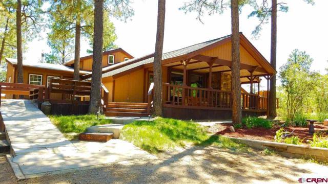 51 Wildcat Road, Durango, CO 81303 (MLS #746265) :: Durango Home Sales