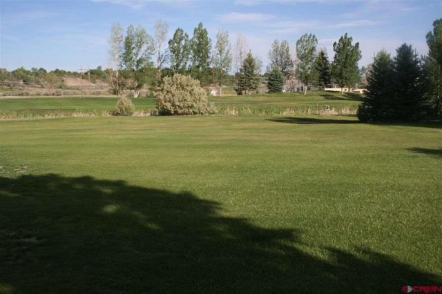 563 Cobble Drive, Montrose, CO 81403 (MLS #746277) :: CapRock Real Estate, LLC