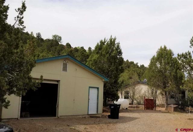 10585 Cr 213, Durango, CO 81303 (MLS #746302) :: Durango Mountain Realty
