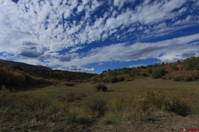 TBD Rd 28.8, Dolores, CO 81324 (MLS #746305) :: Durango Home Sales