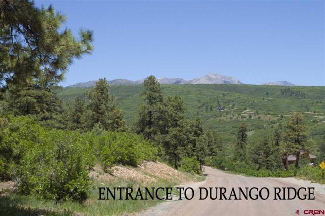 282 Tristan Trail, Durango, CO 81301 (MLS #746328) :: Durango Mountain Realty