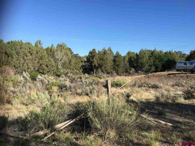 63 Sunset Trail, Arboles, CO 81121 (MLS #746331) :: Keller Williams CO West / Mountain Coast Group