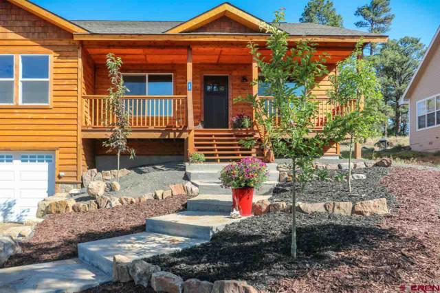 48 Putter Court, Pagosa Springs, CO 81147 (MLS #746338) :: CapRock Real Estate, LLC