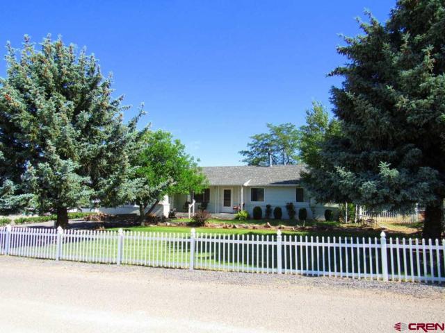 21135 Mountain Village Drive, Eckert, CO 81418 (MLS #746416) :: Durango Home Sales