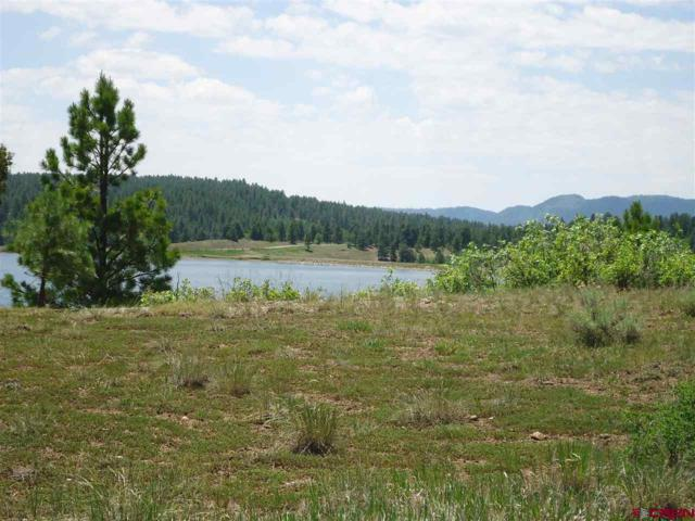 72 Incline Circle, Pagosa Springs, CO 81147 (MLS #746420) :: CapRock Real Estate, LLC