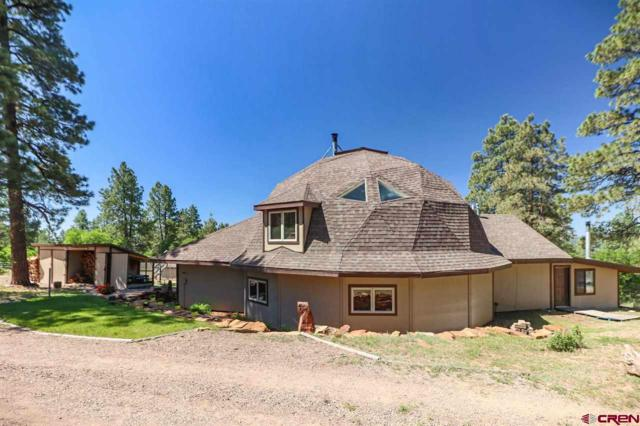 290 Natures Way, Pagosa Springs, CO 81147 (MLS #746454) :: Durango Home Sales