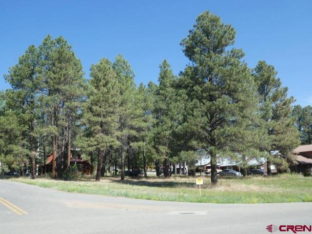 22 Lofty Court, Pagosa Springs, CO 81147 (MLS #746461) :: CapRock Real Estate, LLC