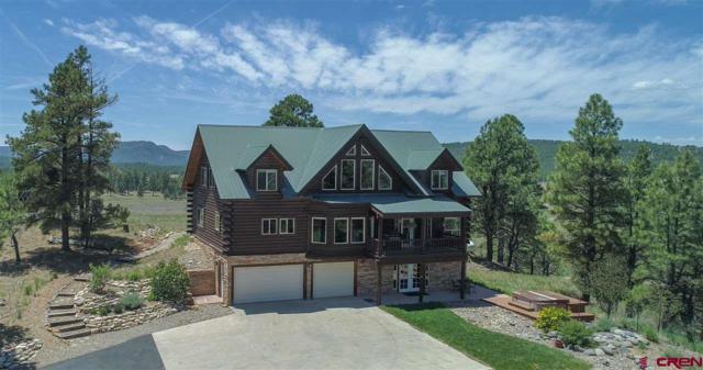 113 San Juan Drive, Pagosa Springs, CO 81147 (MLS #746482) :: CapRock Real Estate, LLC