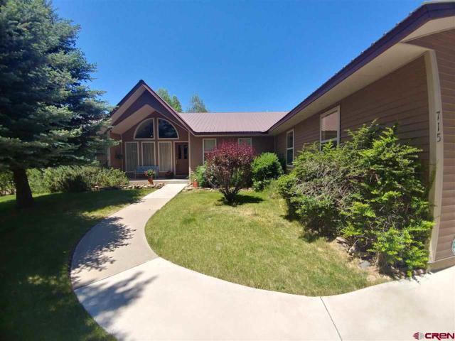 715 Westview Drive, Bayfield, CO 81122 (MLS #746491) :: Durango Home Sales