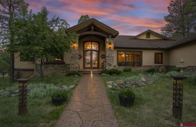 442 S Badger Trail, Ridgway, CO 81432 (MLS #746564) :: Durango Home Sales