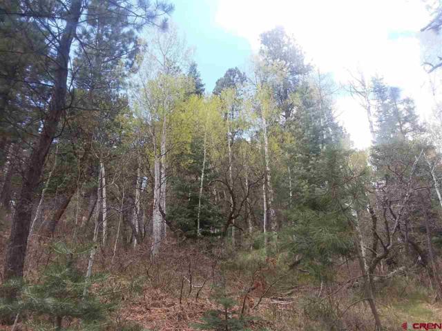 373 Rosalie Drive, Durango, CO 81301 (MLS #746567) :: Durango Mountain Realty