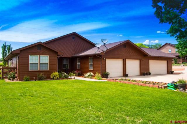850 Ryan Court, Hotchkiss, CO 81419 (MLS #746644) :: CapRock Real Estate, LLC