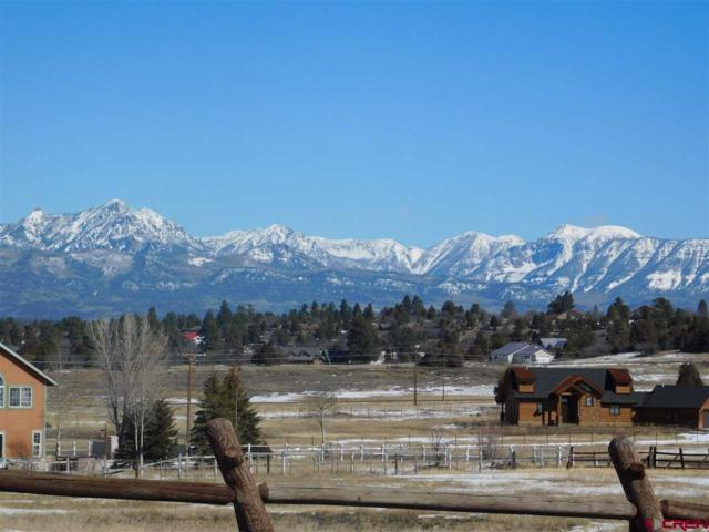 1173 Carino Place, Pagosa Springs, CO 81147 (MLS #746652) :: Durango Home Sales