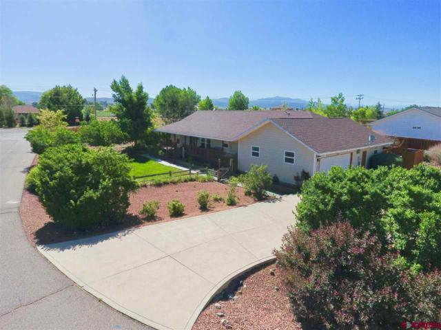2843 Foxtail Drive, Montrose, CO 81401 (MLS #746654) :: CapRock Real Estate, LLC