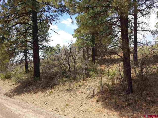 Greenbelt Road, Pagosa Springs, CO 81147 (MLS #746672) :: Durango Home Sales