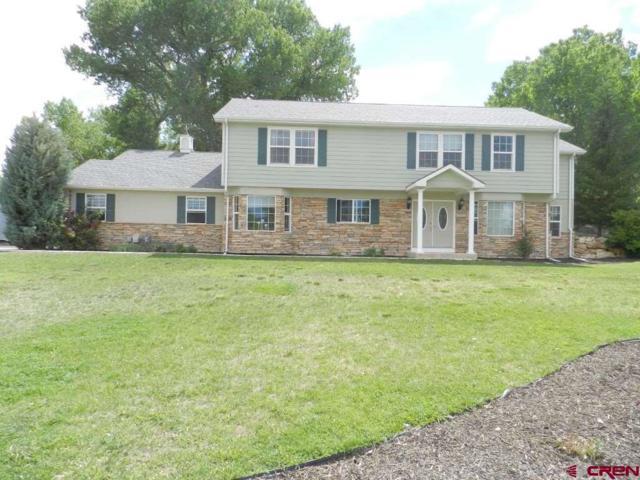 66270 Crestview Drive, Montrose, CO 81403 (MLS #746697) :: CapRock Real Estate, LLC