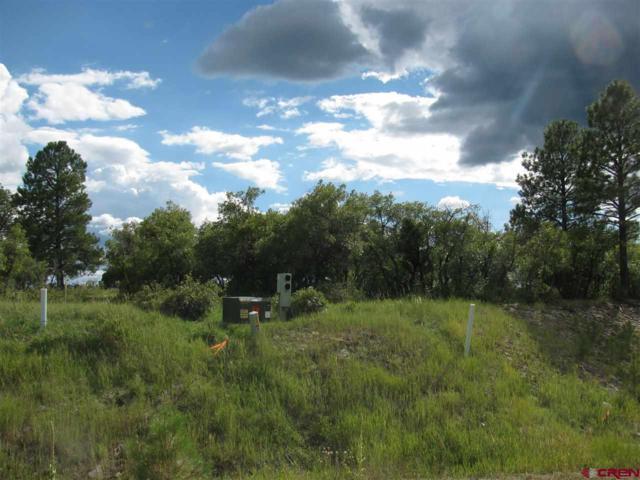 90 Incline Circle, Pagosa Springs, CO 81147 (MLS #746724) :: CapRock Real Estate, LLC