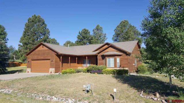 112 Pines Club Drive, Pagosa Springs, CO 81147 (MLS #746753) :: Durango Home Sales