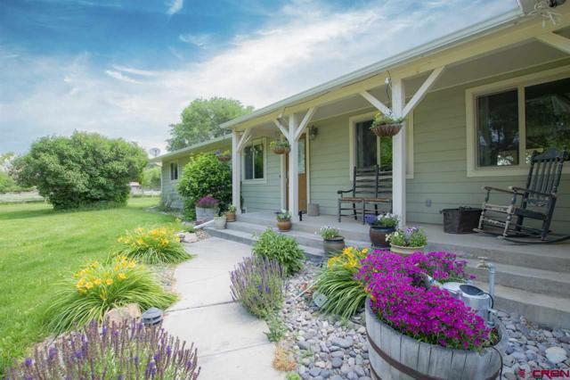 13424 6100 Road, Montrose, CO 81403 (MLS #746764) :: CapRock Real Estate, LLC