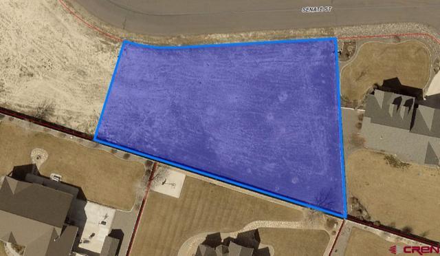 1818 Senate Street, Montrose, CO 81401 (MLS #746801) :: CapRock Real Estate, LLC